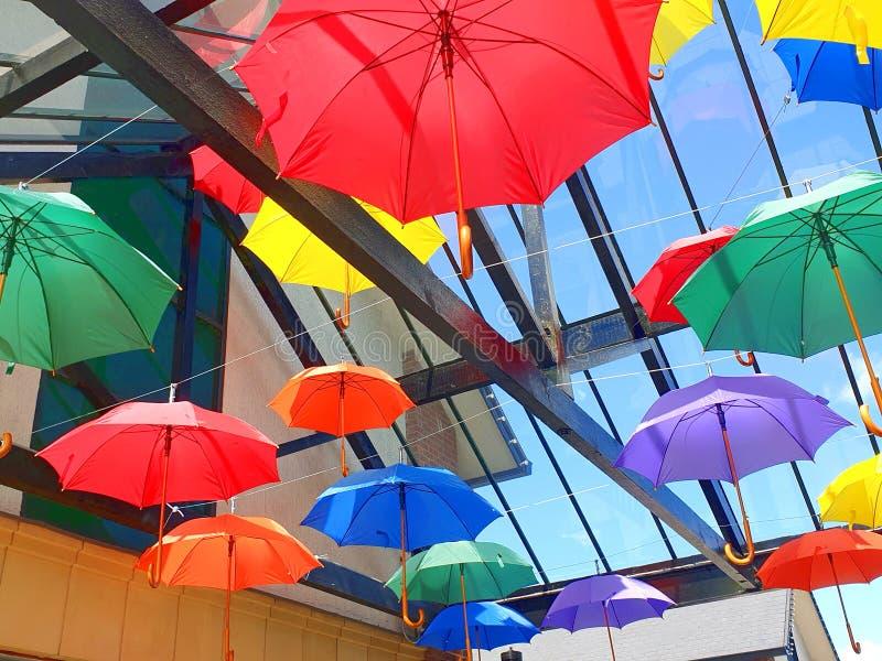 Os guarda-chuvas coloridos penduram de um teto de vidro fotografia de stock royalty free
