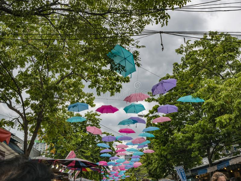 Os guarda-chuvas penduram com a árvore no mercado Banguecoque do fim de semana de Chatuchak foto de stock royalty free
