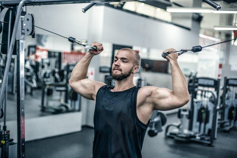 Os homens atléticos fortes brutais que bombeiam acima os músculos malham o fundo do conceito do halterofilismo - fazer consideráv imagem de stock