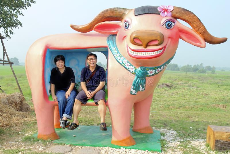 Os homens e os sorrisos e o riso da mulher, sentam-se na estátua colorida do búfalo do sorriso imagens de stock