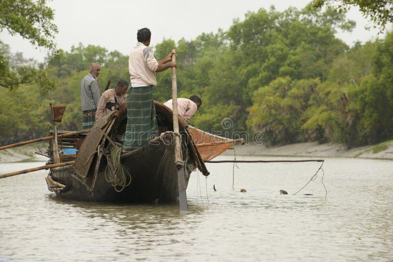 Os homens fazem a pesca com lontras, Mongla, Bangladesh foto de stock