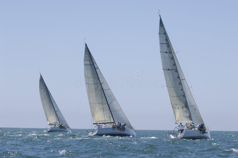 Os iate competem em Team Sailing Event imagem de stock royalty free