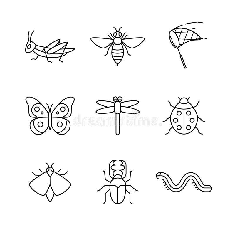 Os insetos diluem a linha ícones da arte ajustados ilustração do vetor