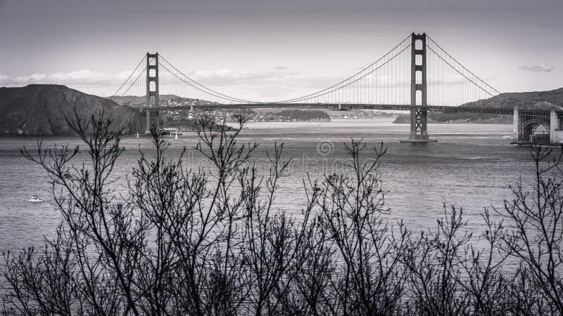 Os invernos andam terras terminam San Francisco imagem de stock
