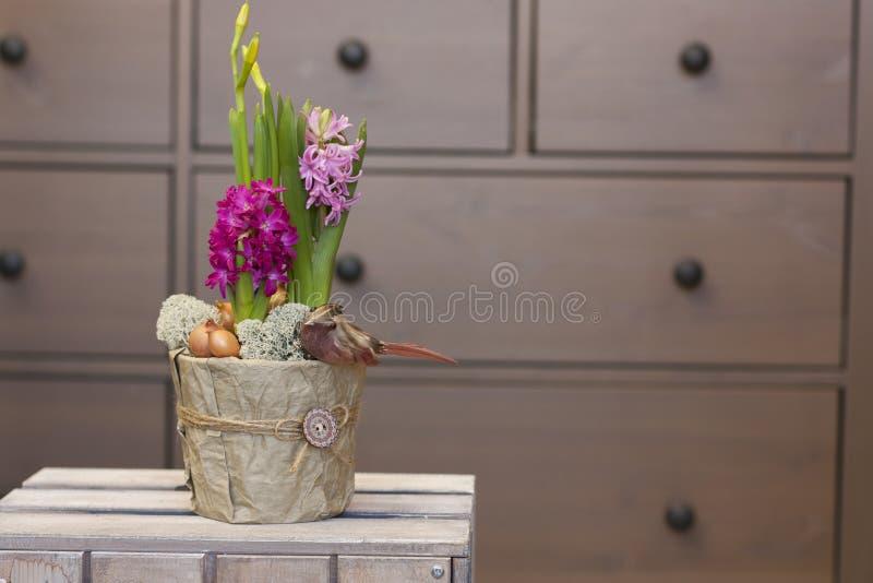 Os jacintos e os narcisos amarelos das flores da mola em uns potenciômetros decorativos estão em uma caixa de madeira fotografia de stock