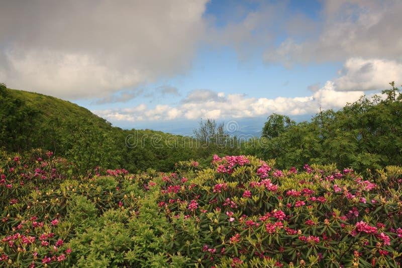 Os jardins Craggy da paisagem negligenciam BRP NC imagem de stock