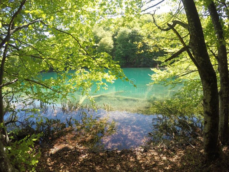 Os lagos Plitvice na Croácia são apenas impressionantes imagens de stock
