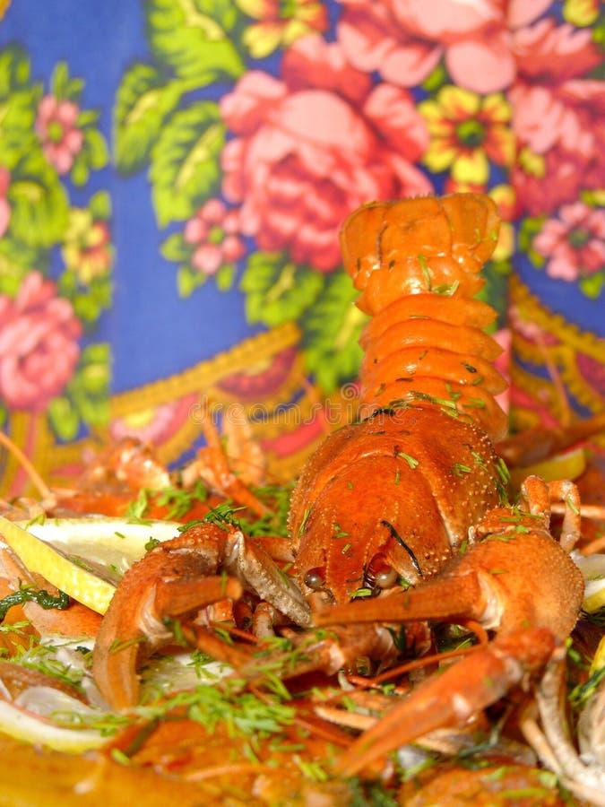 Os lagostins fotografia de stock