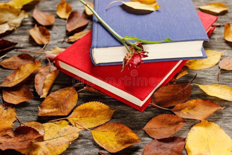 Os livros velhos com vintage cronometram entre as folhas de outono e a luz solar natural brilhante - vida do outono ainda, foco n fotos de stock