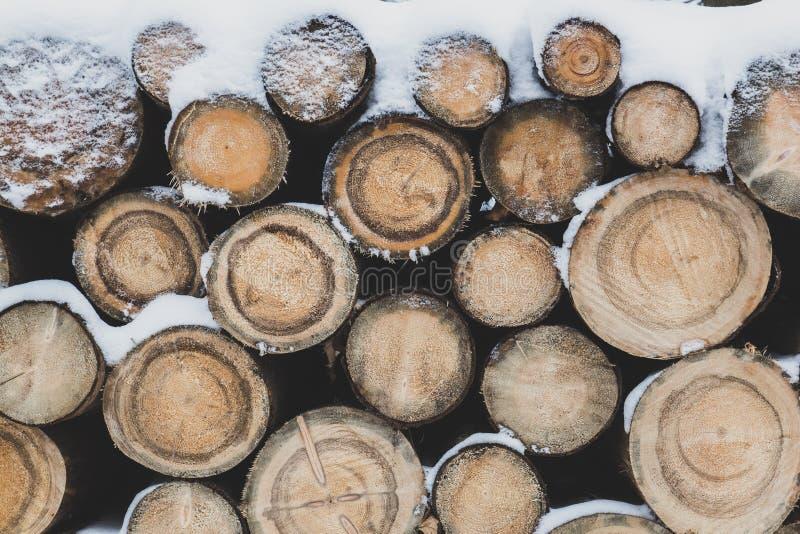 Os logs são espanados com neve imagens de stock