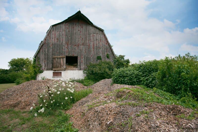 Os lugares Ontário do sul Amherstburg dilapidaram opinião alternativa abandonada do celeiro fotos de stock