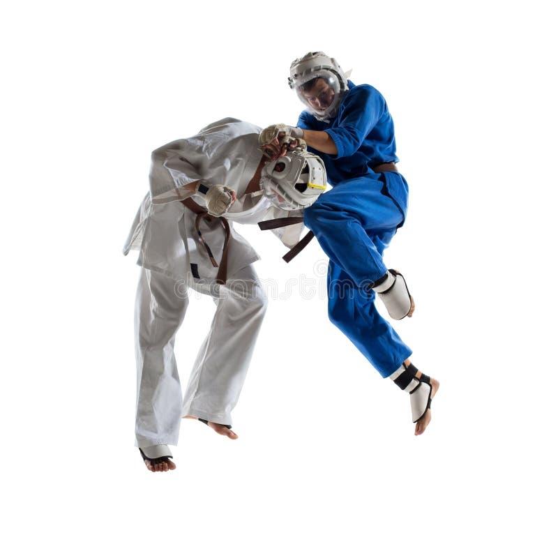 Os lutadores de Kudo são lutar isolada foto de stock royalty free