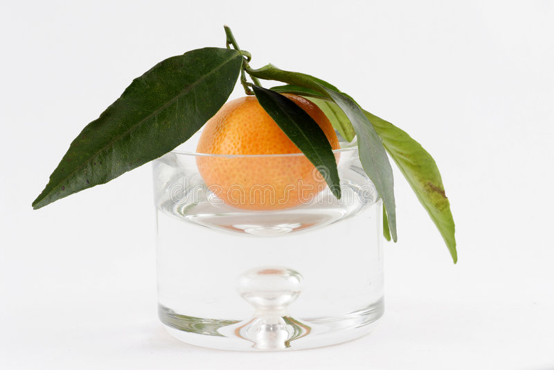 Os mandarino fotos de stock