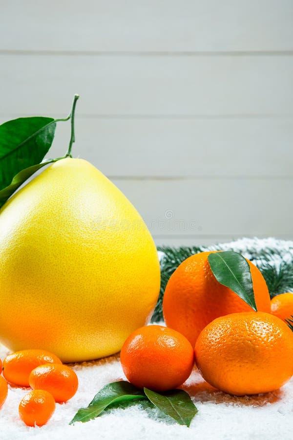 Os mandarino frescos, laranjas, pomelo, kumquat, kinkan com as folhas na neve branca Fundo maduro das citrinas Símbolo do ano nov foto de stock