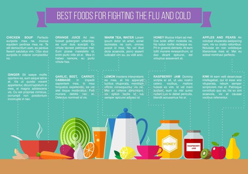 Os melhores alimentos para lutar a gripe e o frio ilustração royalty free