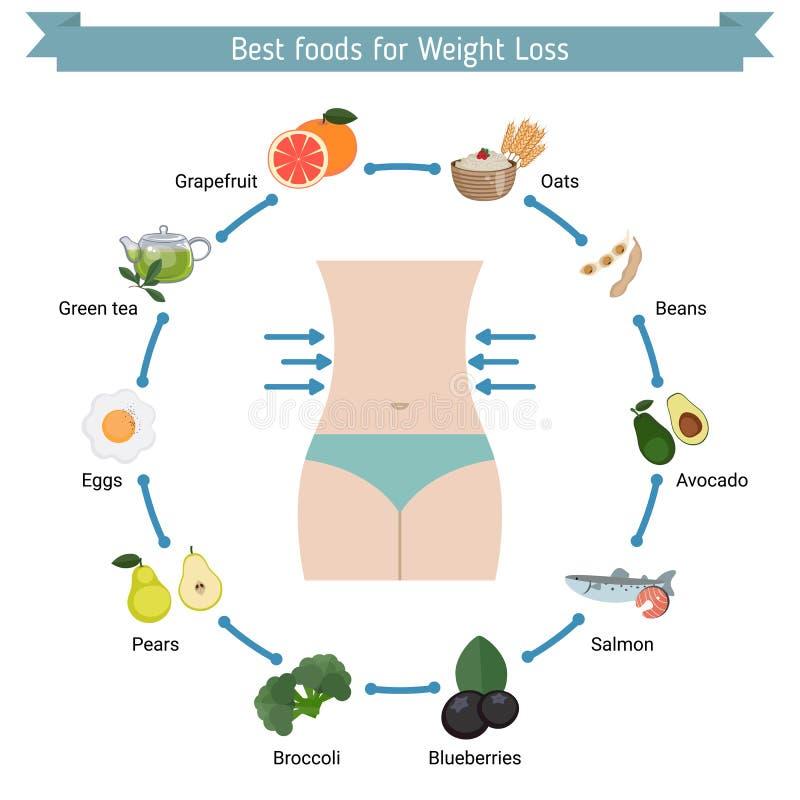Os melhores alimentos para a perda de peso ilustração royalty free