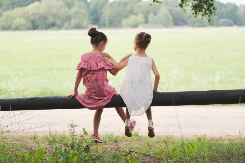 Os melhores amigos felizes que jogam no parque do verão foto de stock