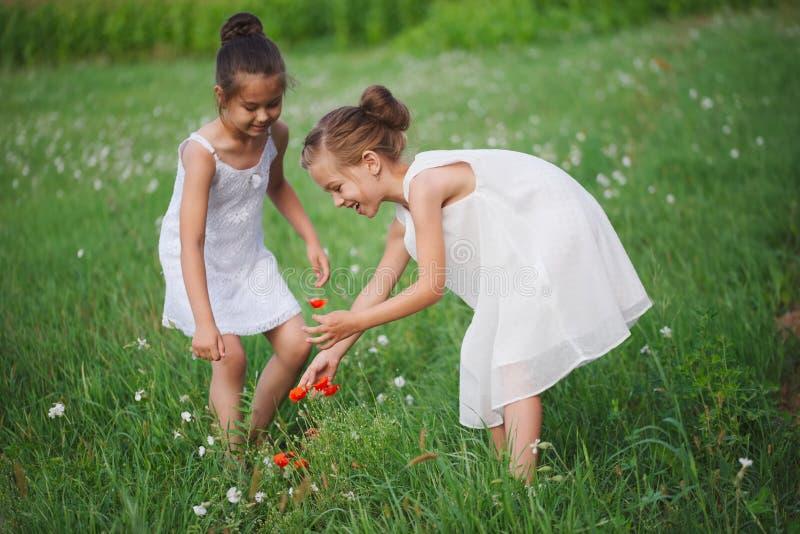 Os melhores amigos felizes que jogam no parque do verão imagem de stock