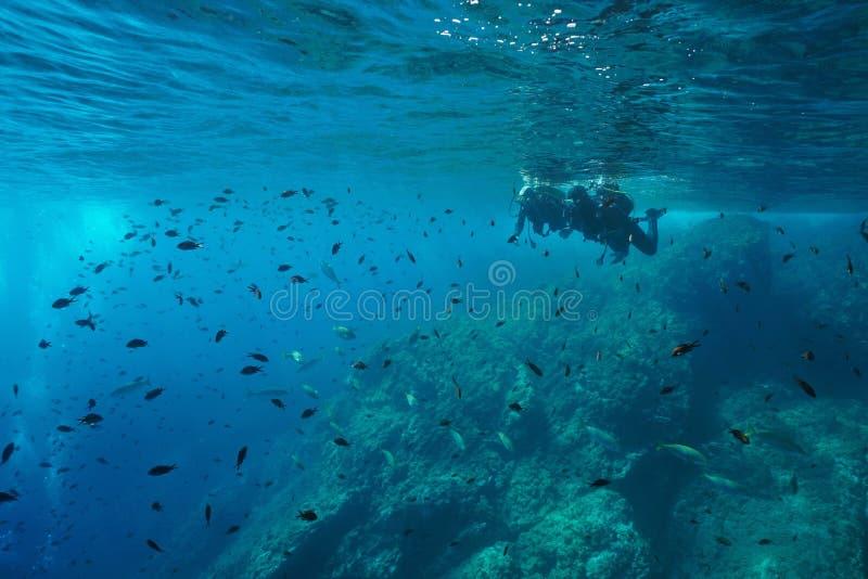 Os mergulhadores de mergulhador olham o banco de areia do mar Mediterrâneo dos peixes imagem de stock