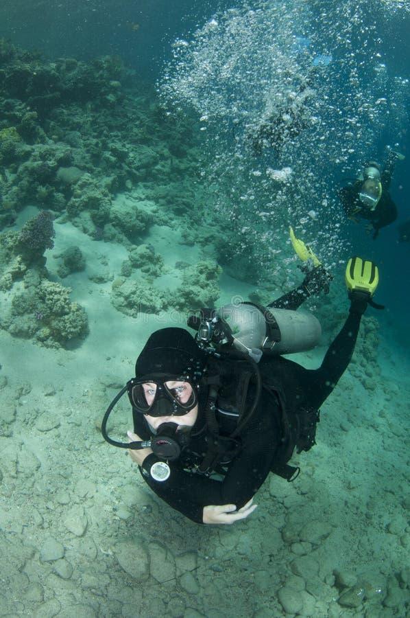 Os mergulhadores do mergulhador nadam sobre o recife coral foto de stock royalty free