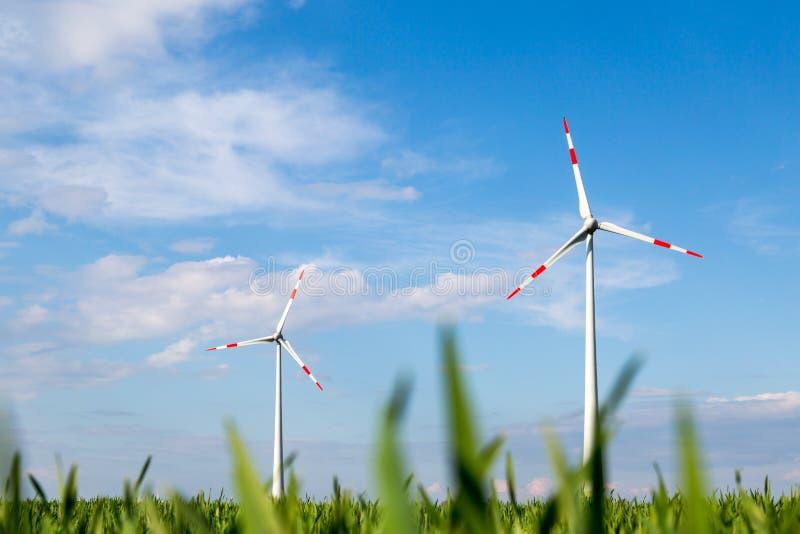 Os moinhos de vento estão em um campo e produzem a eletricidade verde fotografia de stock royalty free