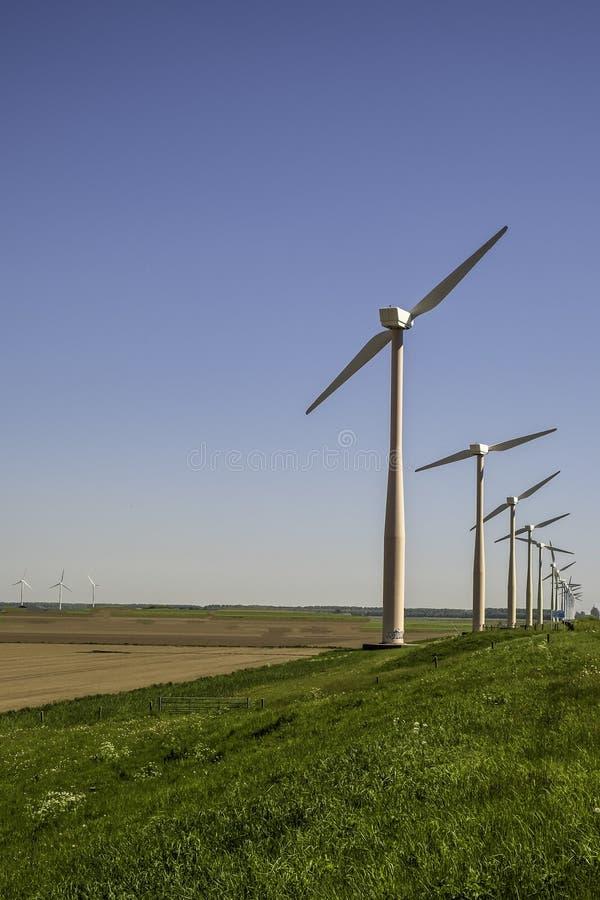 Os moinhos de vento estão entregando a eletricidade para a energia verde imagem de stock royalty free