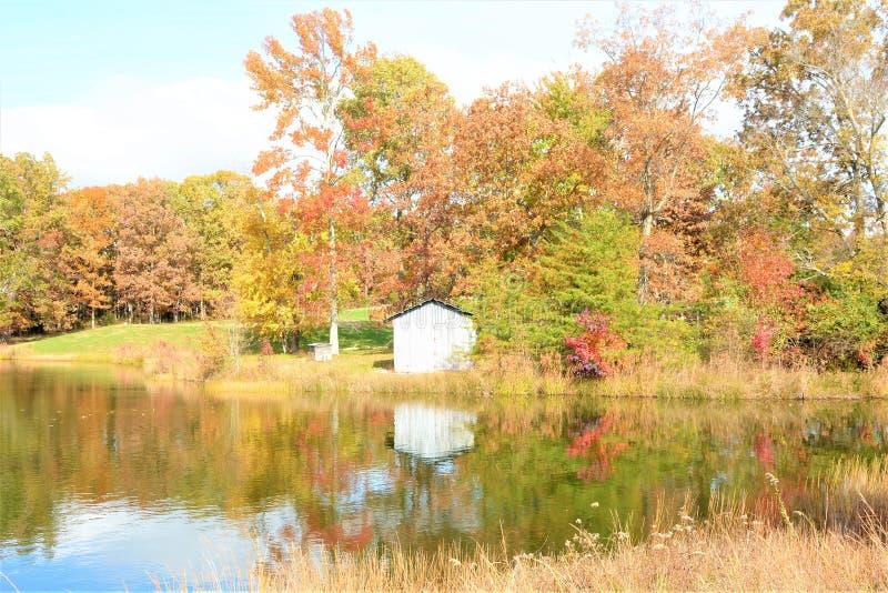 Os montes de Tennessee são pontilhados com lagos pequenos e lagoas foto de stock