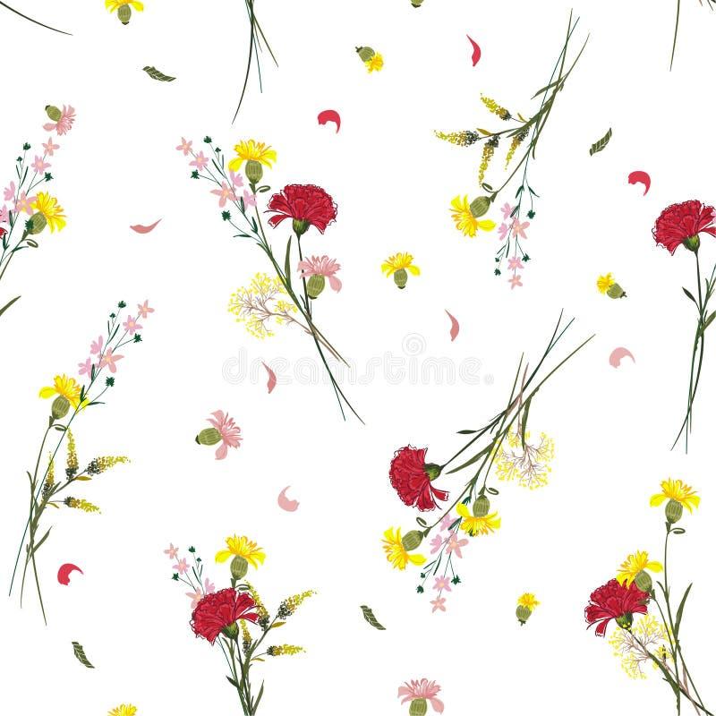 Os motivos botânicos do teste padrão de flor selvagem do verão dispersaram aleatório SE ilustração stock
