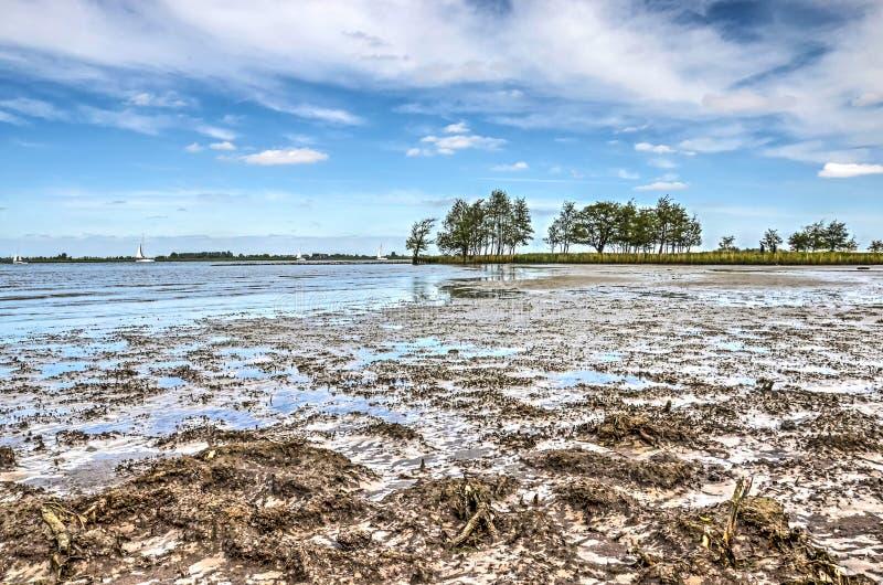 Os mudflats da ilha de Tiengemeten fotografia de stock royalty free