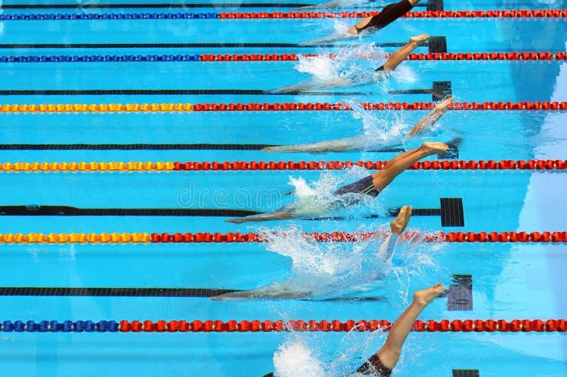 Os nadadores mergulham no começo imagens de stock
