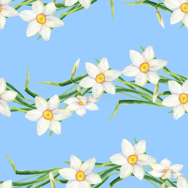 Os narciso da aquarela florescem o teste padrão sem emenda Linha tirada mão ilustração do narciso amarelo Design floral para a ma ilustração do vetor