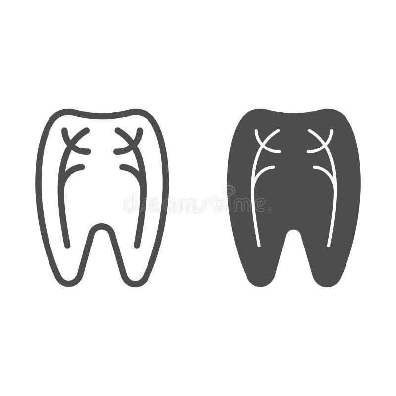 Os nervos do dente alinham e o ícone do glyph Ilustração do vetor do dentista isolada no branco Projeto peridental do estilo do e ilustração do vetor
