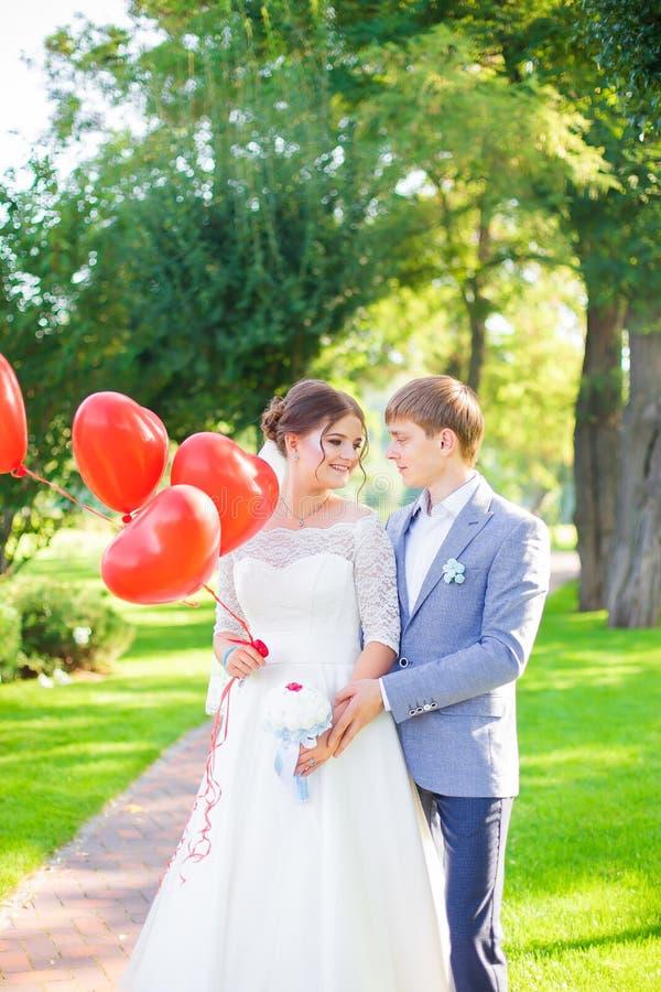 Os noivos abraçam-se contra o contexto da natureza bonita fotos de stock royalty free