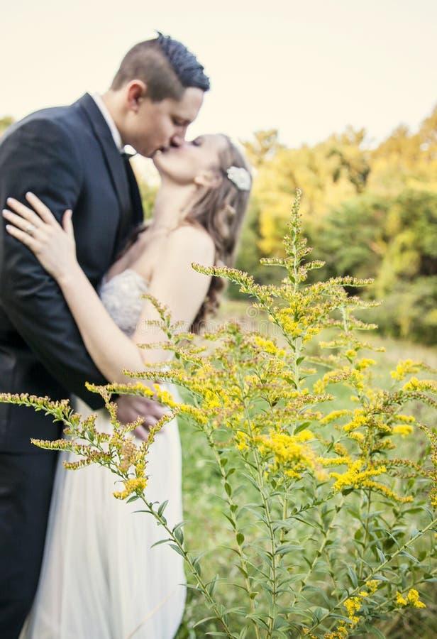 Os noivos beijam primeiramente fotos de stock royalty free