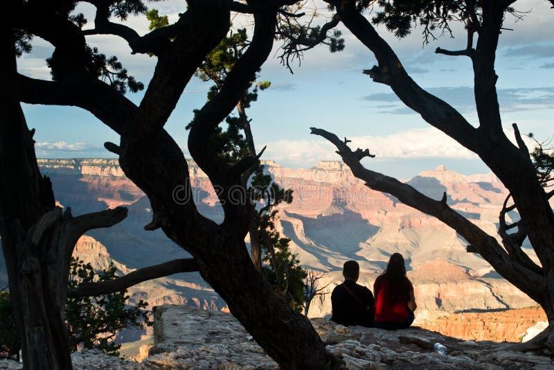 Os noivos olham uma paisagem fotografia de stock royalty free