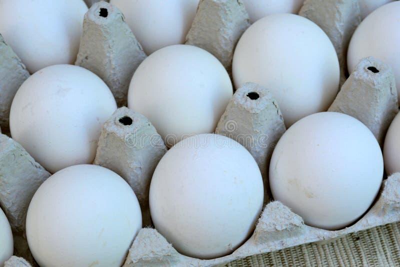 Os ovos brancos da galinha são frescos, empilhado no empacotamento ecológico do cartão Fundo do alimento fotos de stock