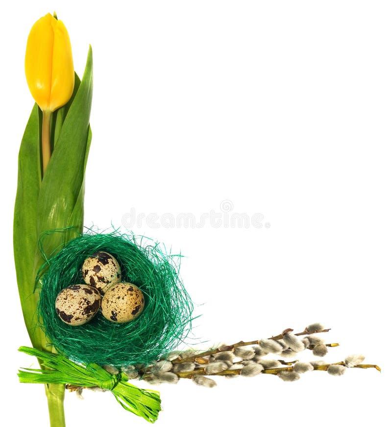 Os ovos da páscoa no pássaro verde aninham-se com tulipas das flores, amentilhos imagem de stock