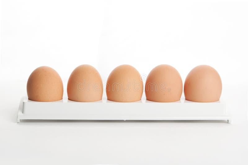 Os ovos de galinha no suporte do ovo fotos de stock royalty free