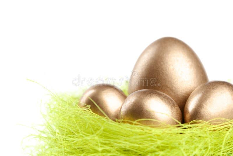 Os ovos dourados estão no ninho do enchimento do sisal fotos de stock royalty free