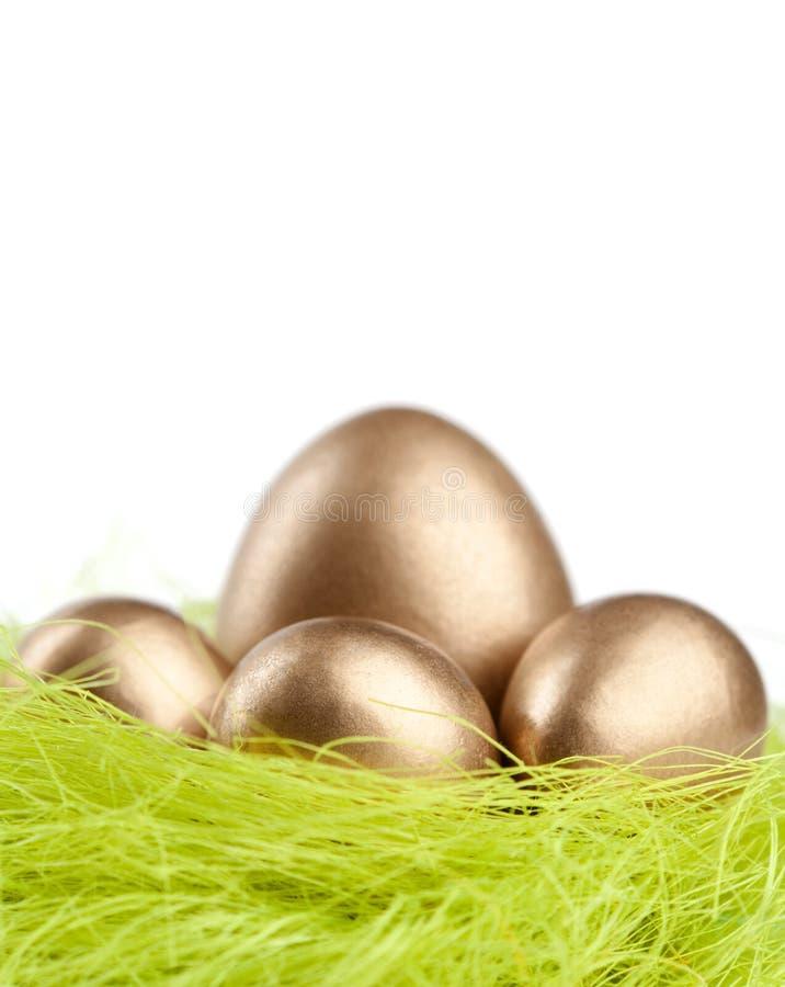 Os ovos dourados estão no ninho do material verde do sisal foto de stock