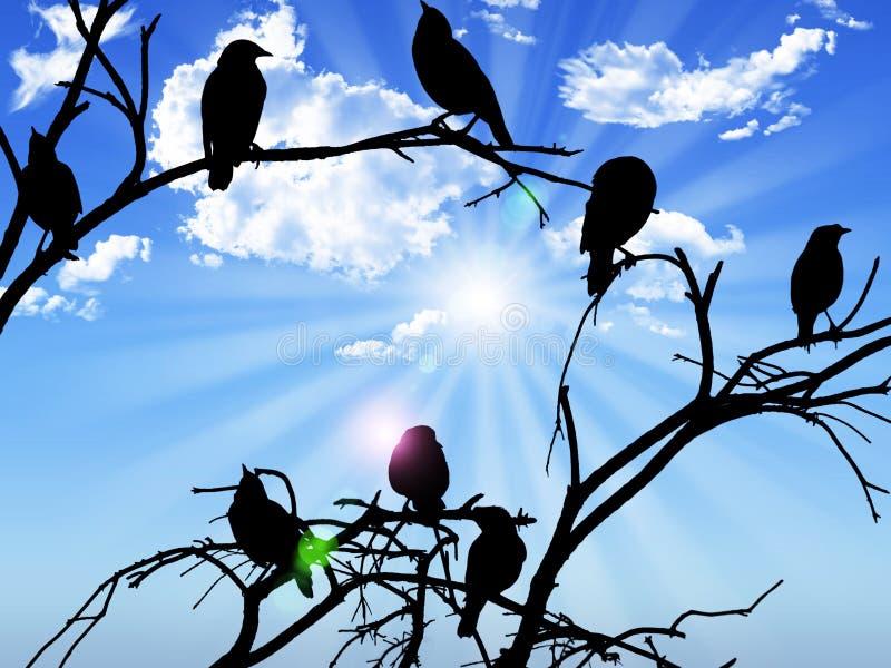 Os pássaros mostram em silhueta o assento em um sol e em nuvens do céu do ramo no b ilustração stock