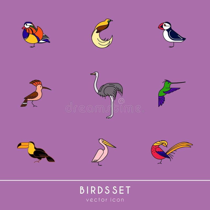 Os pássaros são espécies diferentes ilustração stock