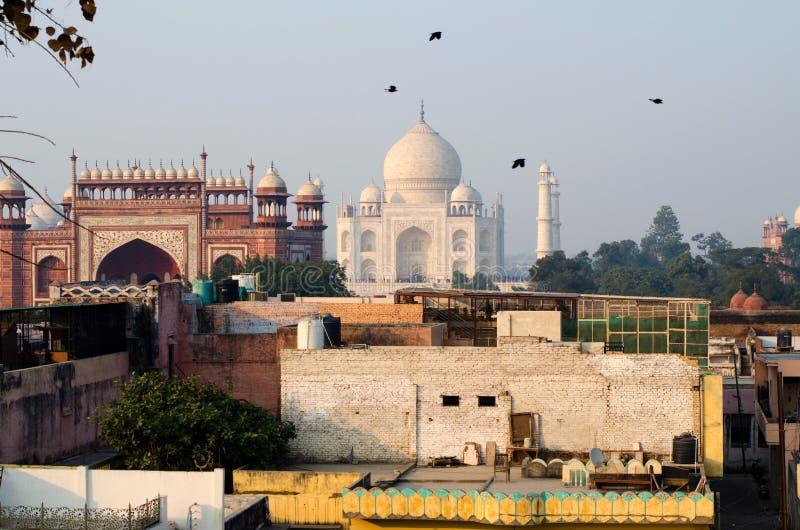 Os pássaros voam sobre Taj Mahal Vista panorâmica do telhado imagem de stock