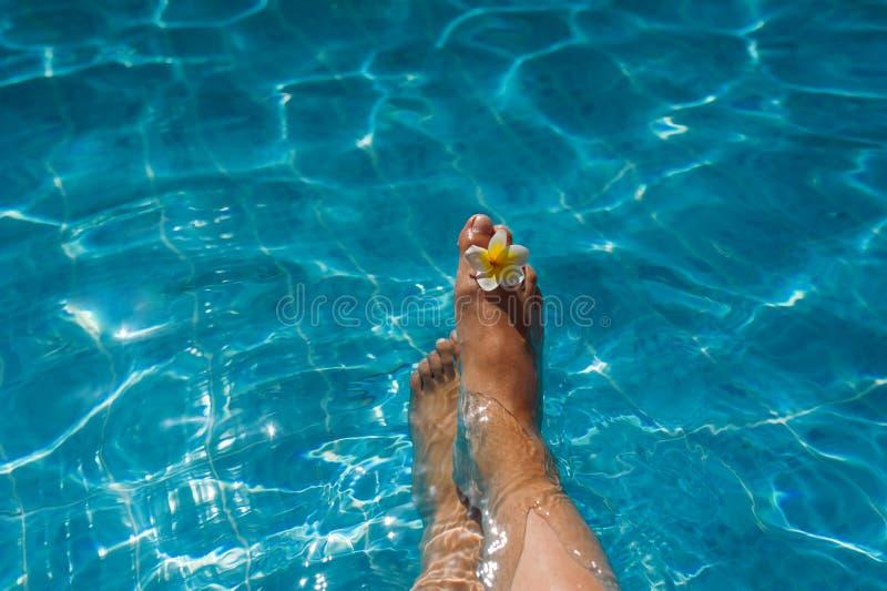 Os pés da mulher com a flor na associação azul imagens de stock