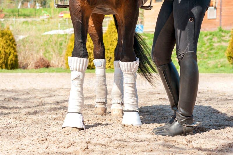Os pés do cavalo nas ataduras com equitação cobrem botas da amazona out fotos de stock
