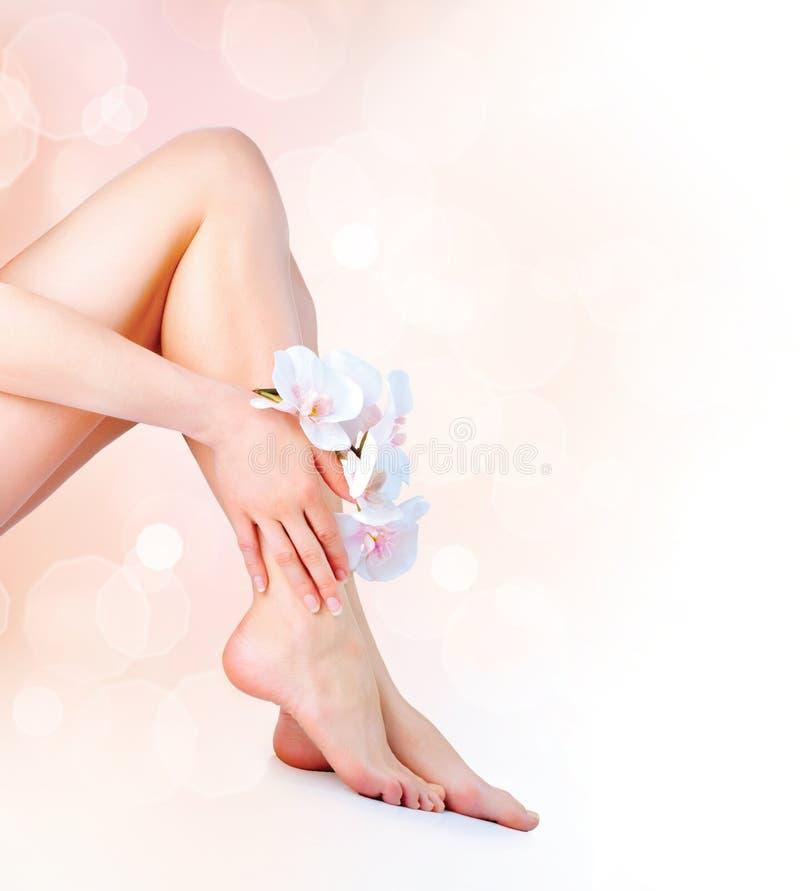 Os pés e as mãos da mulher fotos de stock