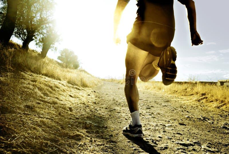 Os pés e os pés do corta-mato extremo equipam treinamento running no por do sol do campo fotografia de stock