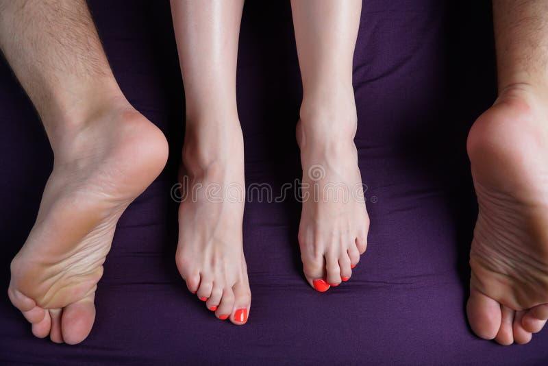 Os pés fêmeas e masculinos encontram-se em uma folha violeta Os amantes têm o sexo imagens de stock royalty free
