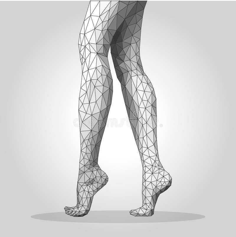 Os pés fêmeas poligonais que estão no monochrome da ponta do pé engrenam ilustração do vetor