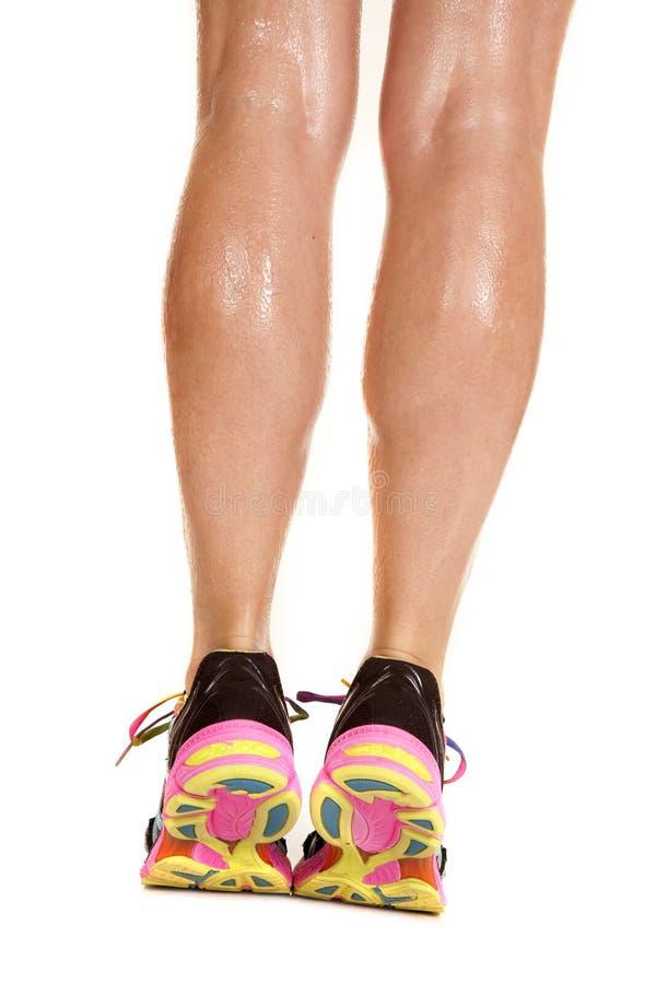 Os pés molhados da mulher acima nos dedos do pé suportam imagens de stock royalty free